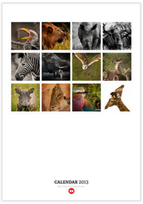 African Wildlife Calendar by Leigh Diprose