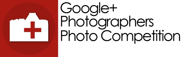 Google+ Photographers Photo Comp